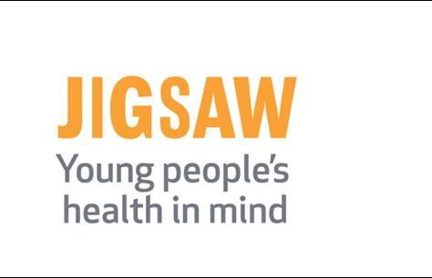 jigsaw use